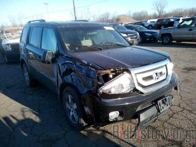 Photo 5FNYF4H40BB073017 - HONDA PILOT 2011