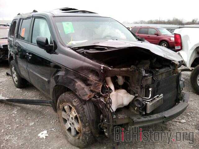 Photo 5FNYF3H92BB035519 - HONDA PILOT 2011