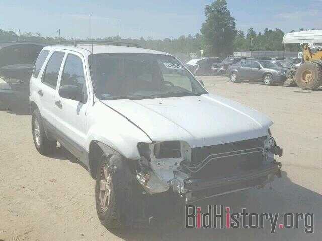 Photo 1FMYU03117KB17222 - FORD ESCAPE 2007