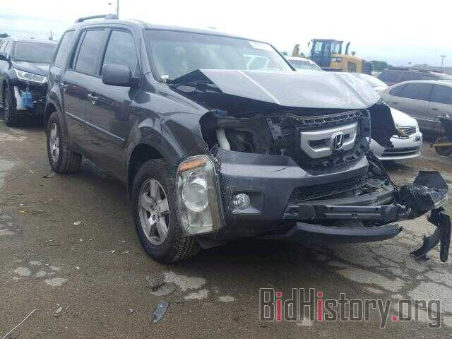 Photo 5FNYF4H71BB068743 - HONDA PILOT 2011
